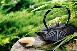 le thé vert a des vertus brûle graisse