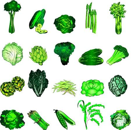 Légumes ventre plat