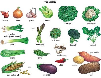 prodiet bienfaits, arnaque, arnaque et avis - Remède homeopathie pour maigrir